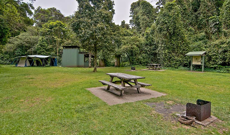 Forest Tops campground - Accommodation Melbourne