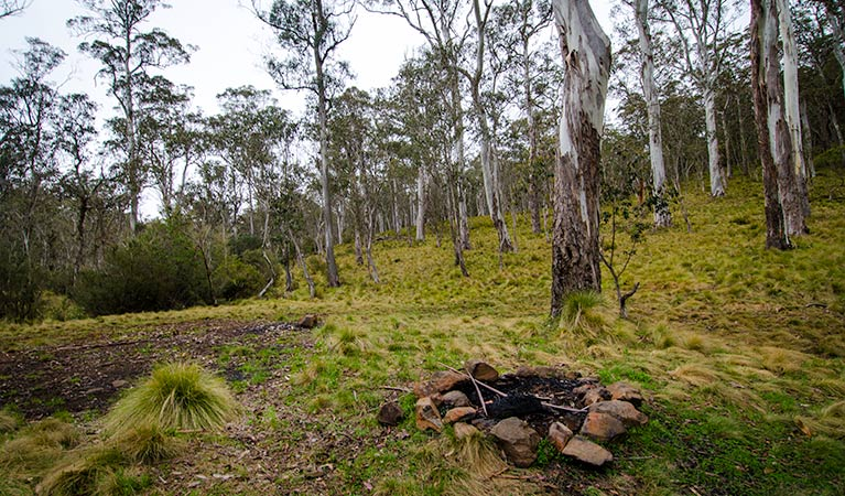 Gummi Falls campground - Accommodation Melbourne