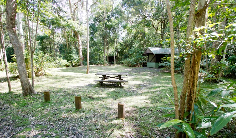 Iron Pot Creek campground - Accommodation Melbourne