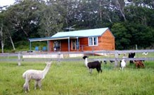 Moorallie Cottage Farm Stay - Accommodation Melbourne